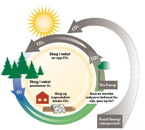 Bioenergi fornybar